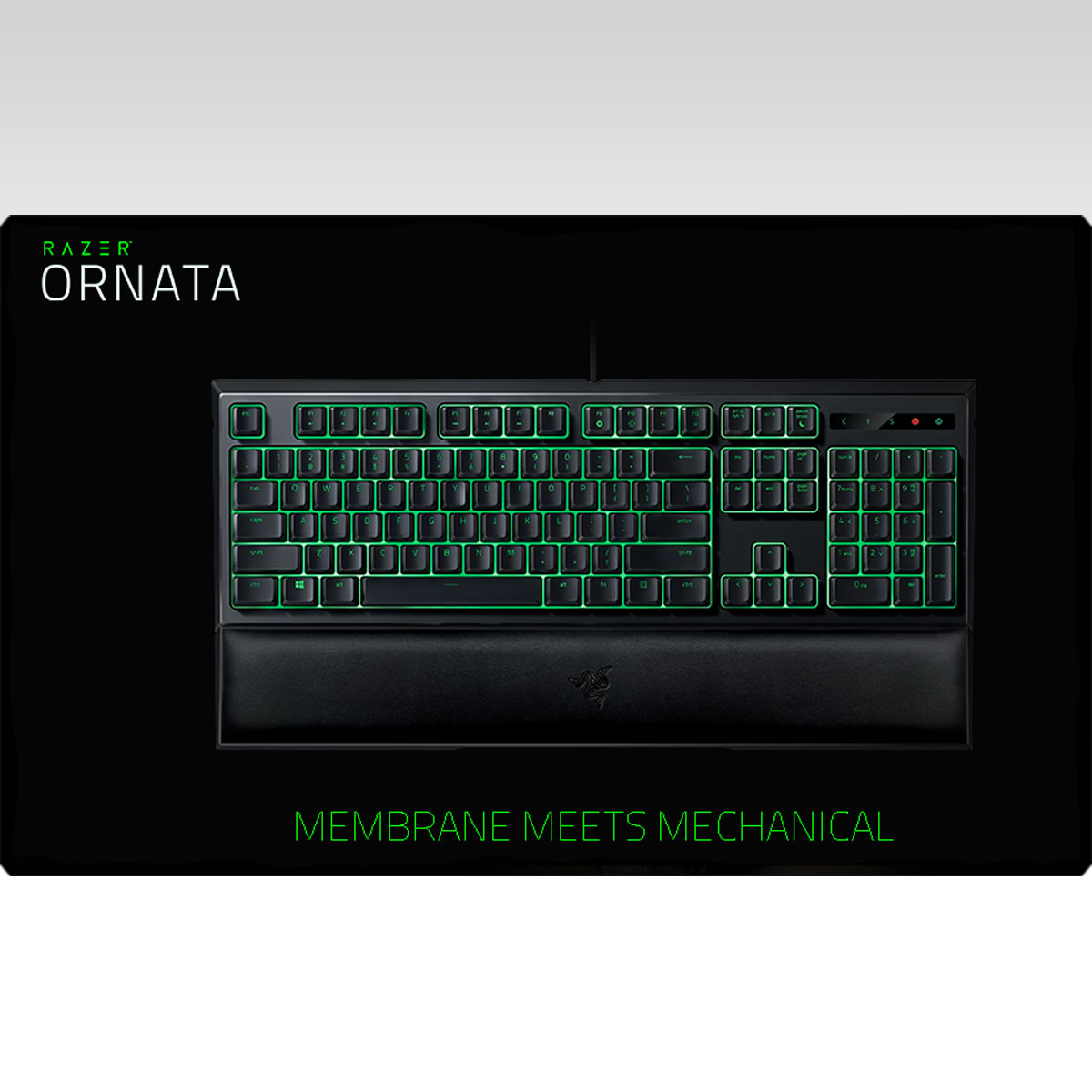 RAZER - ORNATA KEYBOARD [GR] RZ03-02042400-R3P1 (PC)