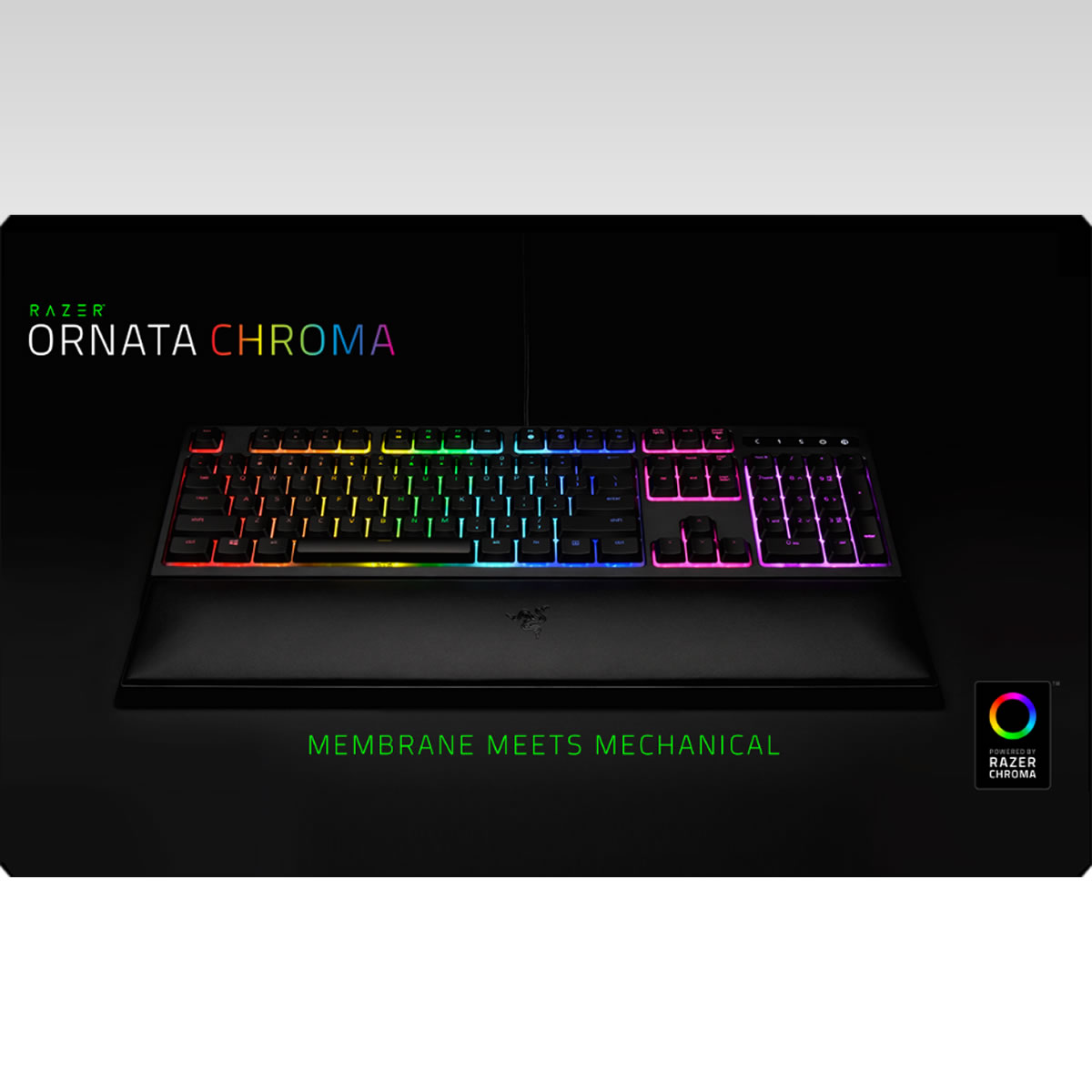 RAZER - ORNATA CHROMA KEYBOARD [GR] 8886419343349 (PC)