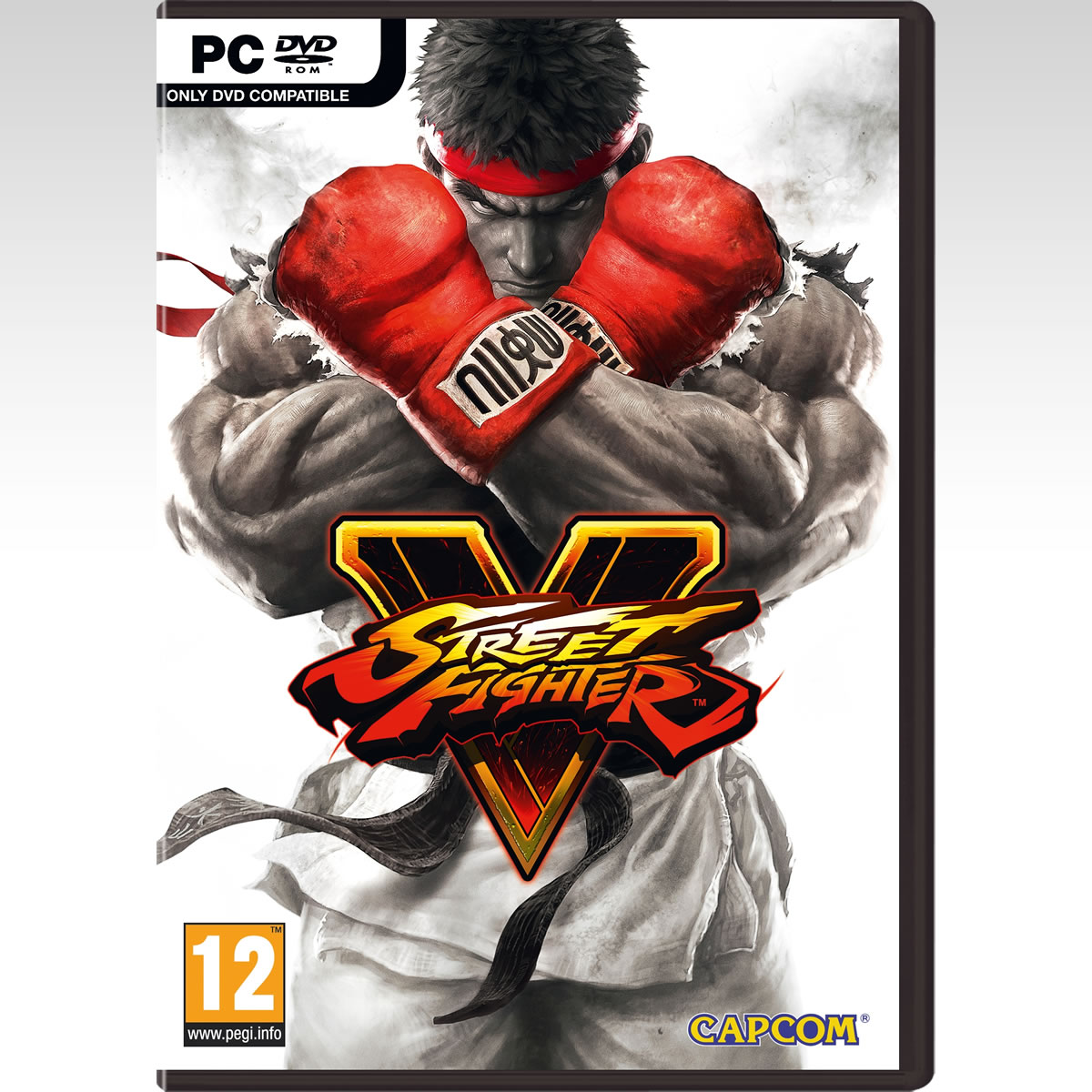 STREET FIGHTER V (PC)